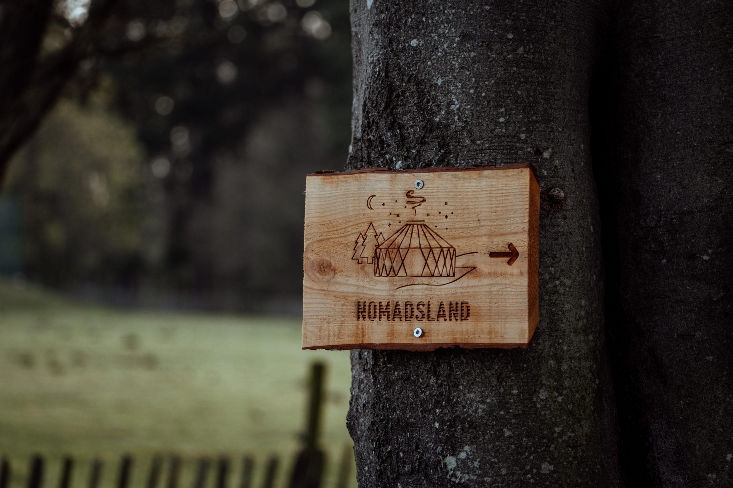 Nomadsland-7007 (1)